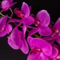 Орхідея силіконова 92903