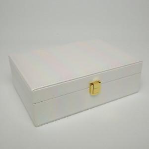 Кейс (22 х 15 х 7.5 см.) 5-9766